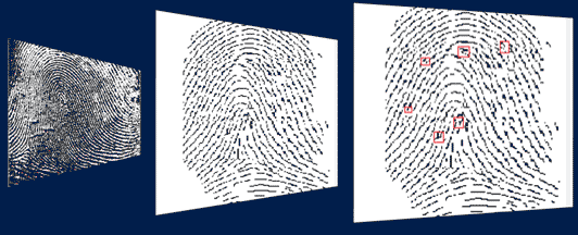 windows_fingerprints